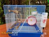 Mouse Cage with accessories