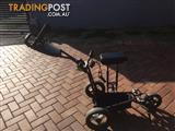 Triumph Golf Buggy