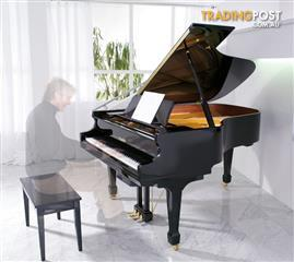 Alex Steinbach lifestyle Piano and The Invisible Pianist