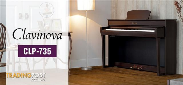 Yamaha Clavinova Digital Piano CLP735 - Black - Dark Rosewood - Dark Walnut - White