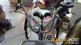 Adult 6 gear Tricycle