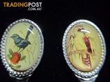 Collectable Spoon Set-The Australia Birds *Free Postage