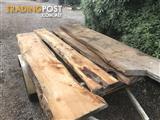 Cypress timber slabs