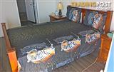 2x Queen Bed Tiger Flat Sheets x2 Pillowcases New