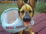 Dog Statue - Novelty item