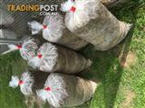 Organic Quail Manure