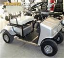 SCORPION golf cart buggy NEW MODEL SG - 8