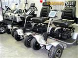 SCORPION golf cart buggy NEW MODEL SG1000