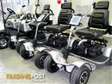 SCORPION golf cart buggy NEW MODEL SG1000