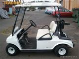 USED DS CLUB CAR 48V ELECTRIC GOLF CART 2008