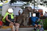 Neapolitan Mastiff ( stud ) Neo Mastiff