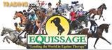 Equissage Back Pad & Hand Held URGENT SALE!!