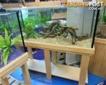 YXY2 Aquarium Raw Pine Cabinets in Stock