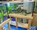YXY2 Aquarium Raw Pine Cabinets in Stock (clearance sale now on)