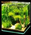 YXY2 Fish Tank - Aqua nano cube Minature Aquarium