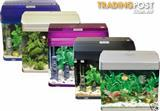 YXY2 Aquariums Tanks Small Kits Available (clearance sale now on)