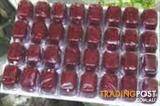 YXY2 FOOD - Frozen Blood Worms - 10 packs for $50