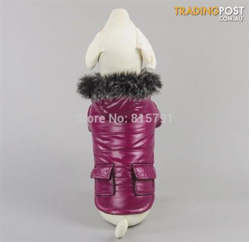 Gorgeous Puffer Bomber Jacket Hoodie for small Dogs