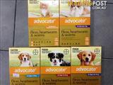 Advocate Pest Treatment *Cats & Dogs*