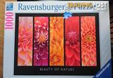 Ravensburger 1000 piece jigsaw puzzle: Beauty of Nature