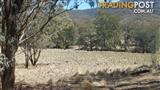 PERFECT HOBBY BLOCK 40 ACRES FOR ONLY $64,950
