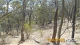 PERFECT HOBBY BLOCK 120 ACRES FOR ONLY $89,950
