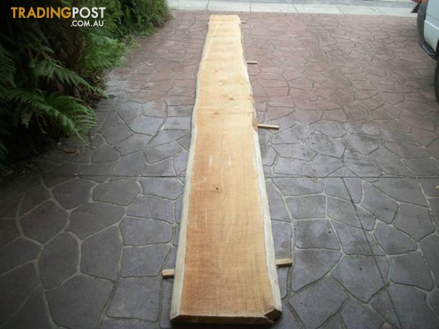 Bunya Pine Timber Slab 5 3 Mtrs X 45cm 2 2 Mtrs X 1 Mtr