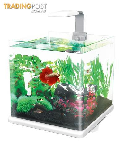 Sale aquarium 25l cube tank with filter and led light for Eco fish tank