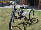 3 wheeler push bike  suitable  for disabled  person