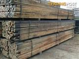 Hardwood 75mm x 50mm x 5.4m
