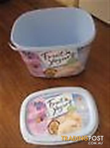Plastic Storage Ice cream Container with lids -2L