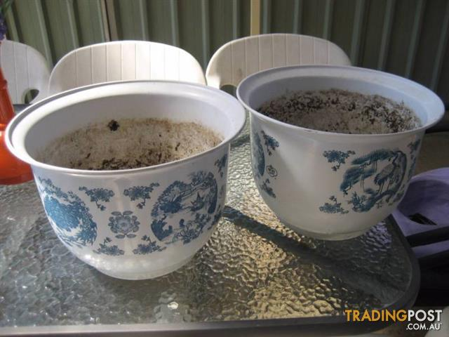 2 Plastic Pots With Outside Drawing
