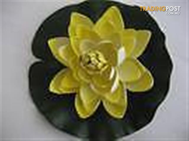 Plastic flower - 2 crown and .....