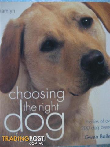 DOGS DOGS DOGS -Choosing options