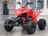 2013 ELSTAR 150cc ATV Quad Fully automatic Camel