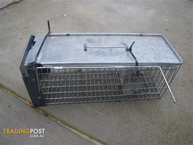 HUMANE TRAP CAPTURE LIVE ANIMALS RATS POSSUMS CATS BAITED TRAP CAGE TRAP