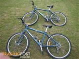 "TWO ORBIT QUANTUM MOUNTAIN BIKE 21 SPEED BICYCLE ALUMINIUM FRAME 24"" TYRES GR8 4 SIBLINGS PRESENT"