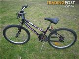 "DE CARLO FLAME MOUNTAIN BICYCLE 15 SPEED BIKE 24"" TYRES STEP THROUGH FRAME"