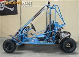 IceBear Dune Buggy/Go Cart 125cc Twin Seat Fresh 2013 Stock!