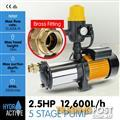 5 stage High Pressure Auto Water Pump