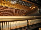 Yamaha U1M Piano