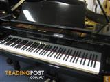 Yamaha Grand Piano C5